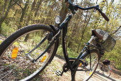 Radtour Zum Altlandsberger Sattelfest 28042019